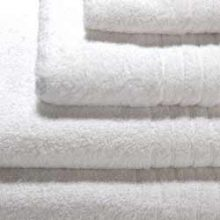 Embrace 650g Luxury Combed Cotton Snow White